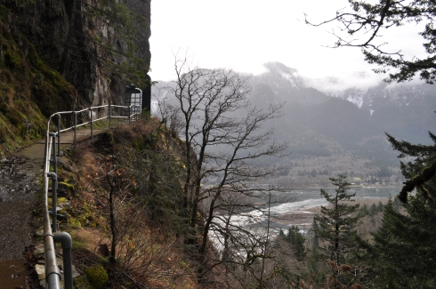 Columbia River Gorge from a height