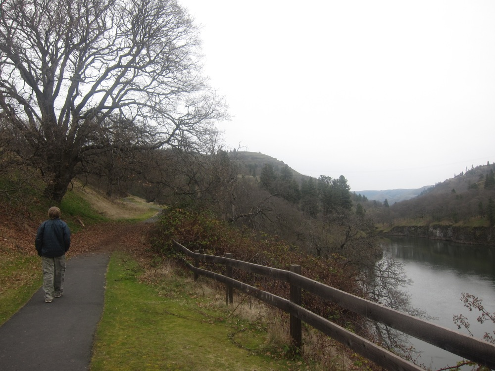 Diego walks along the nature path beside the Klickitat River, frequented by Bald Eagles.