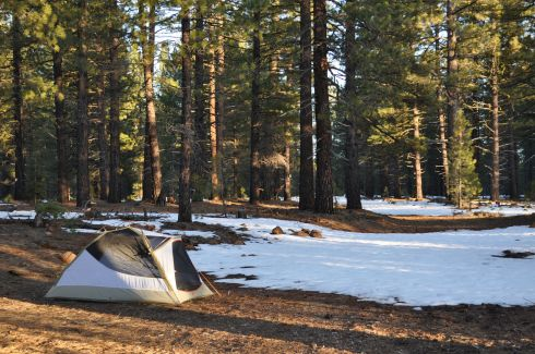 Our camp beside the Lassen National Forest road