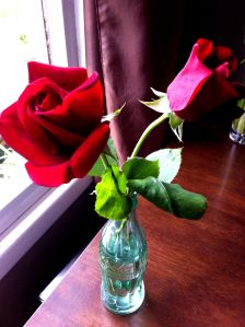 roses in Coke bottle