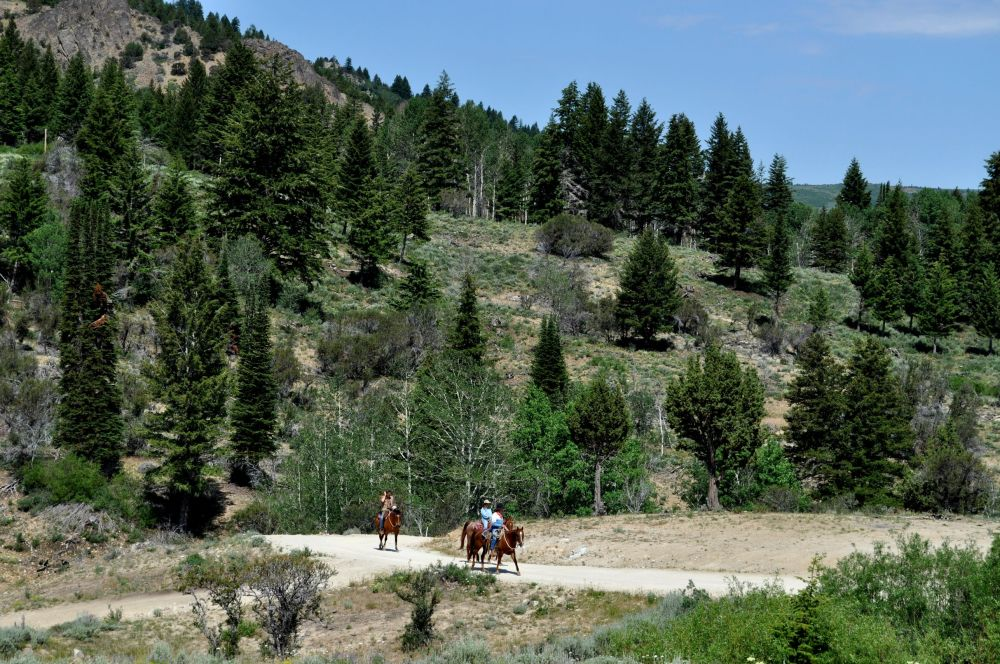 Now what else would you expect to see in the trails around a Wild West Ghost Town?