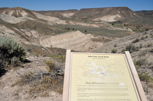 Mascall Formation Overlook. You can see the wedge of the ash layer poking up.