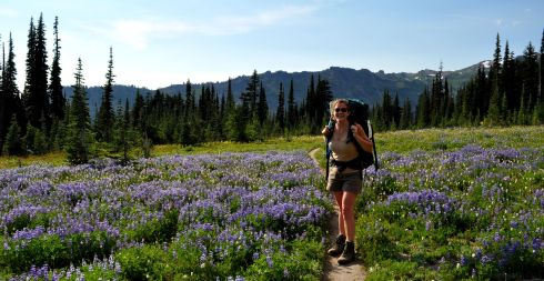Me in a field of lupine. Tired and delighted.