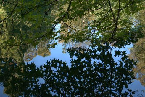 I enjoyed experimenting with the reflections in the lake.