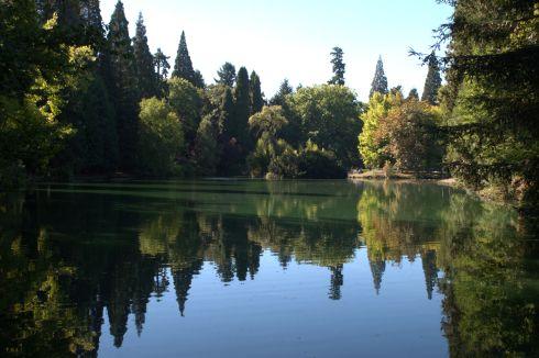 Island in a lake at Laurelhurst Park in Portland, Oregon