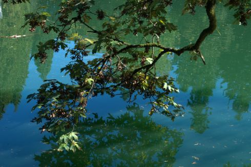The algae gives a strong colour to the lake