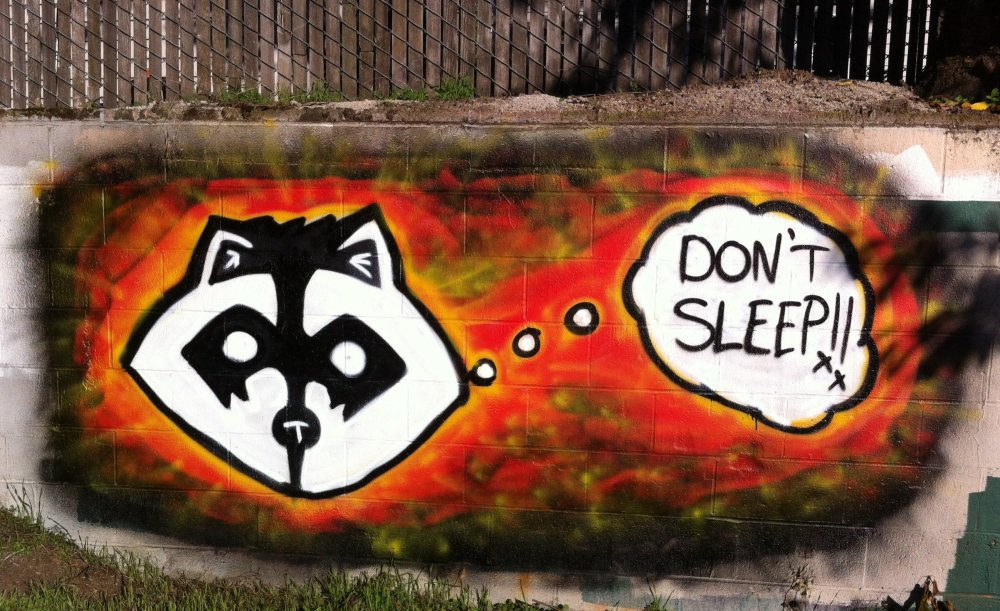 This is the first raccoon of its kind I have seen in colour. Art near the intersection of Belmont and 60th.
