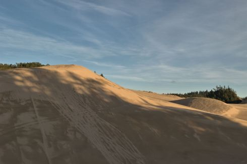 A high dune beside the sea