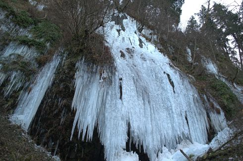 There is a falls here, but so much water spills that the entire hillside has frozen