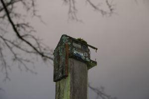 fascinating birdhouse