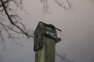 fascinating birdhouse