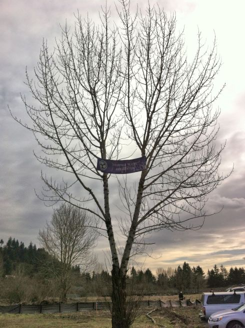 Banner in a tree beside the parking lot