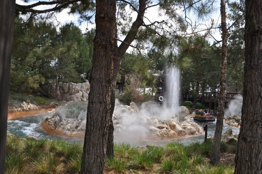 And if you guessed forest, you would be right. Disneyland is in the forest, with rivers and geysers.