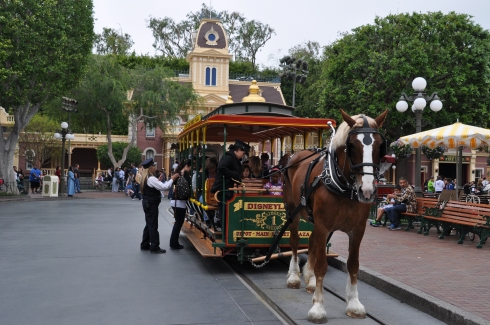 A peaceful and traditional ride through the park could be had with a horse and buggy.