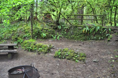 One of the cute campsites we found. What a jungle it is here!