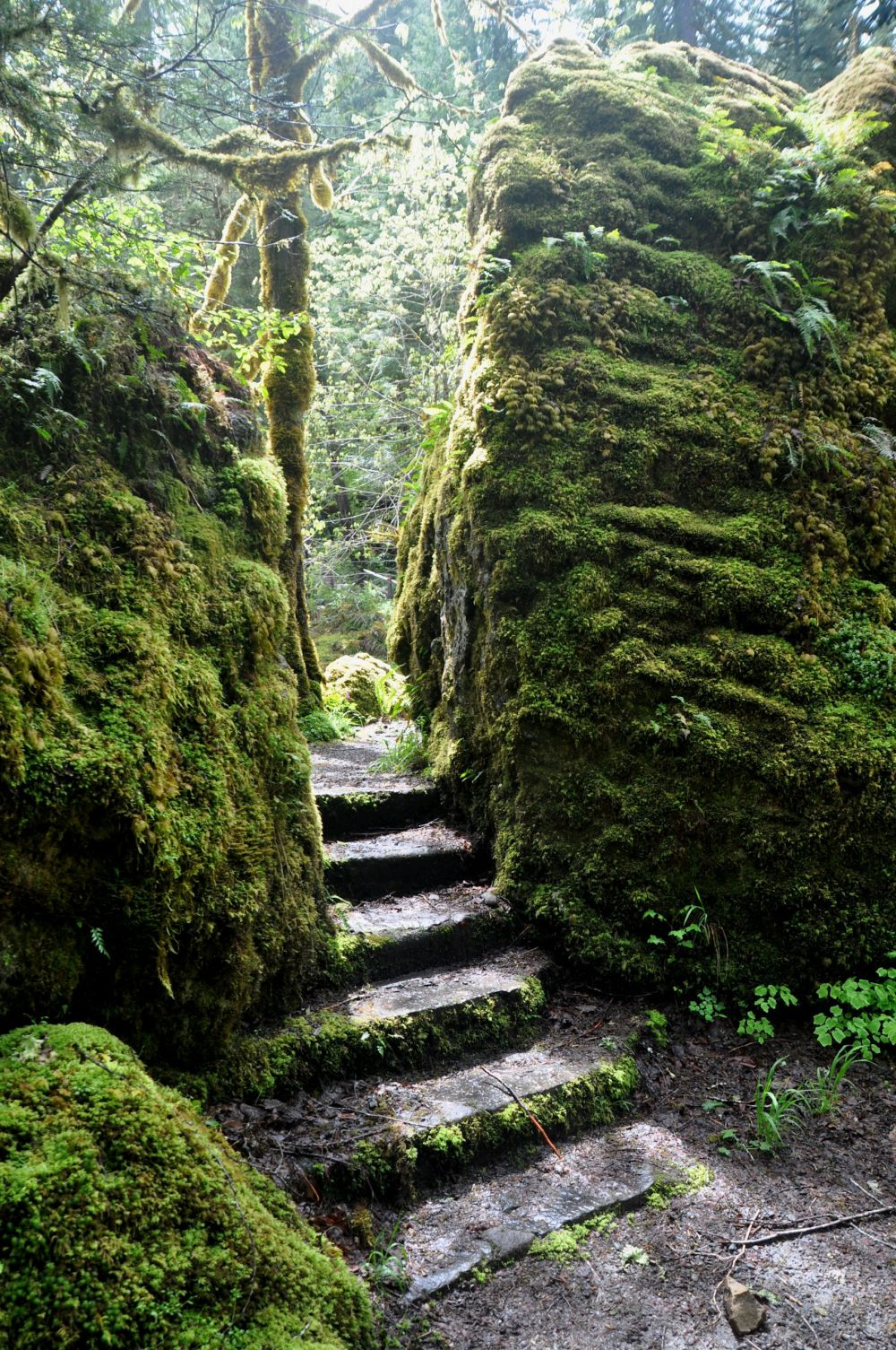 Stone steps between two huge rocks, leading to a footbridge to the House Rock trail.