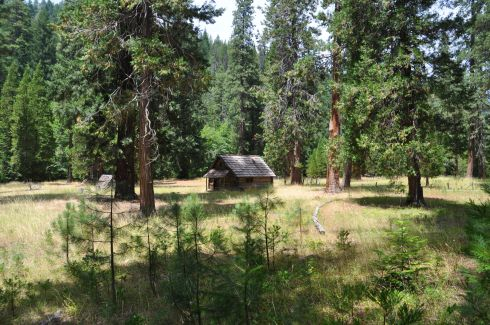 Cabin built by Willard Ormand Jorstad out of Douglas Fir.