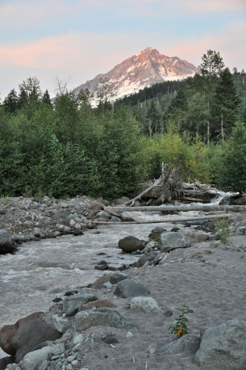 The volcano soars above the Sandy River while the evening light lingers.