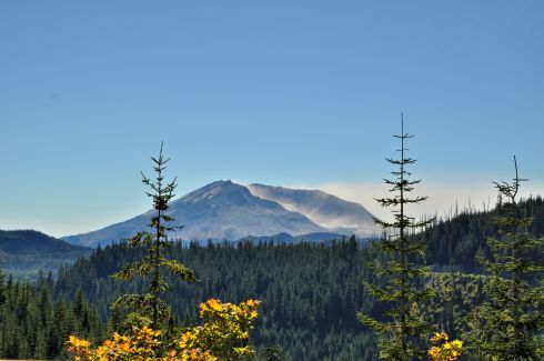 I am on the East side of St. Helens, and the wind is Easterly. So the air is clear over the forest, but in the places where the volcanic dust is still on the surface, the particles are raised high in the air. You can see the cloud moving off to the West.