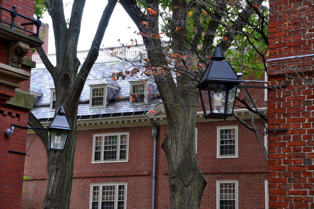 A glimpse of the Harvard Campus