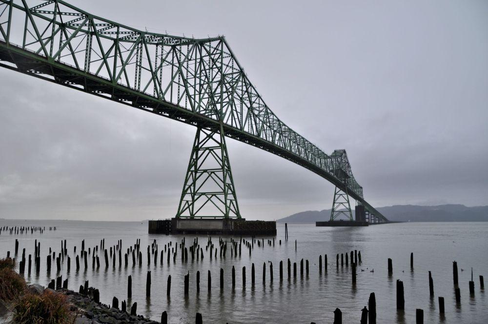 Astoria-Megler Bridge from Oregon to Washington. We took this bridge and soon began the Washington leg of the trip.