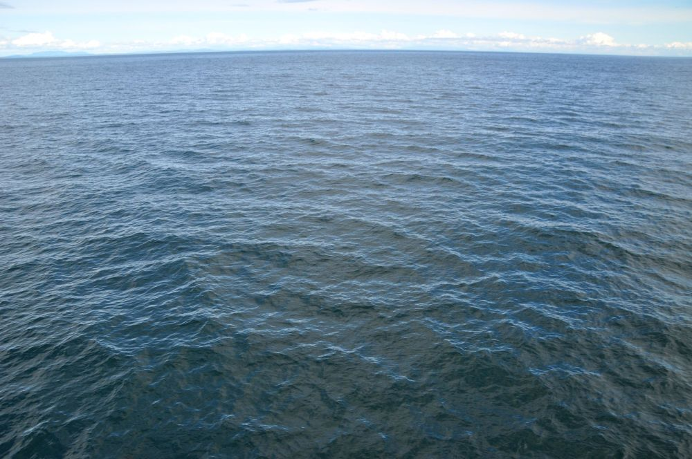 Strait of Juan de Fuca. It was meditative to stare into the water.