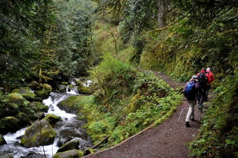 Our trail followed Multnomah Creek for quite a while.