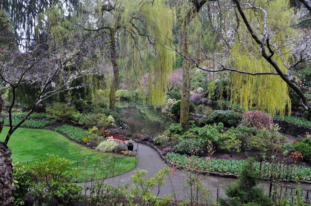 Another view of the Sunken Gardens