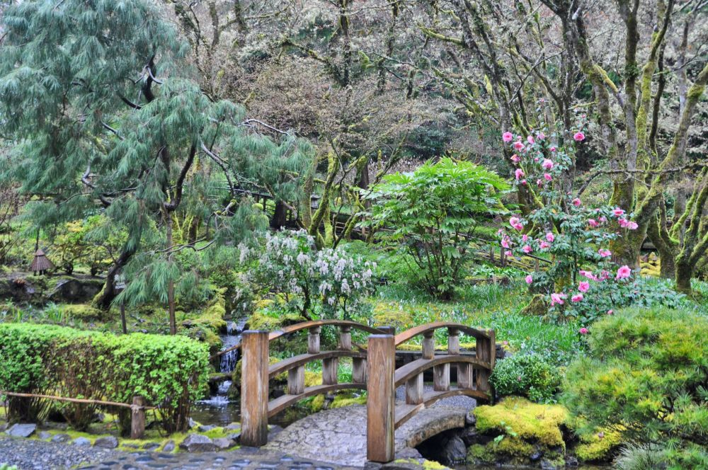 The Japanese garden is large and well done.