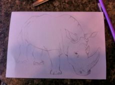 early draft rhino