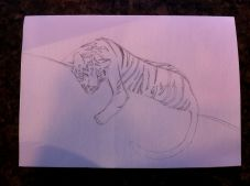 early draft tiger