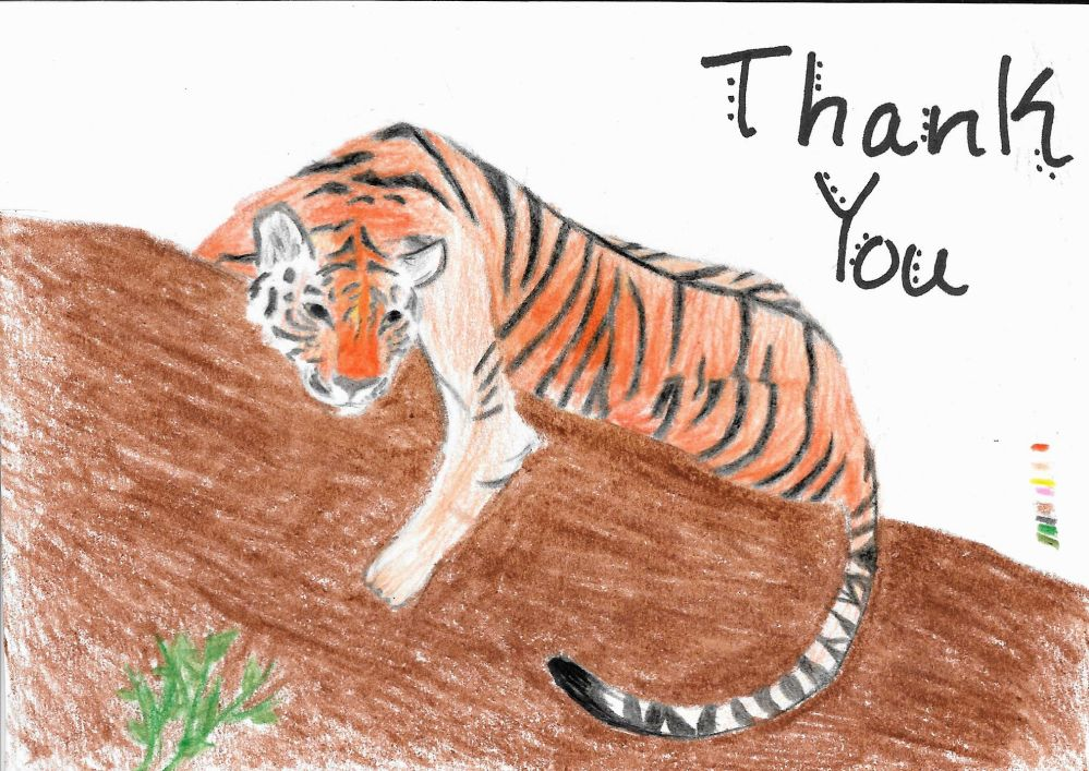 Endangered tiger on a thank you card for wildlife rangers.