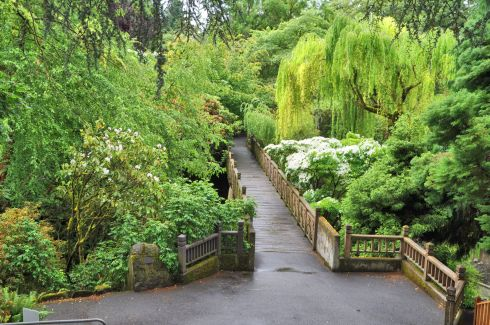 A view of Crystal Springs Rhododendron Garden from the entrance.