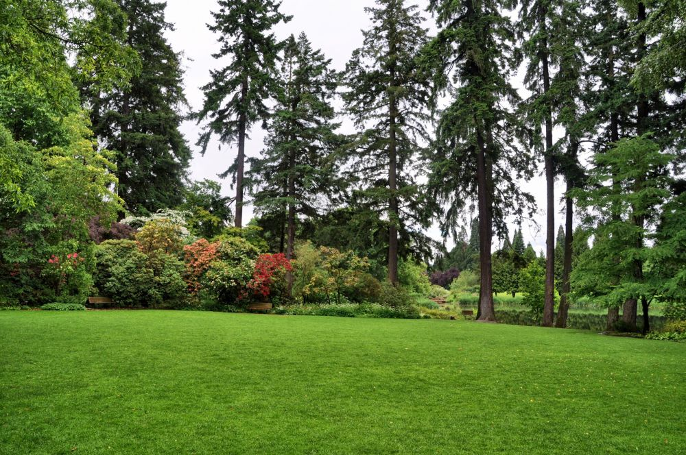 This lawn is used for events such as weddings.