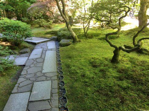 Shady stone path