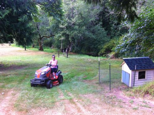 N mows the enormous lawn past our new adorable chicken coop.