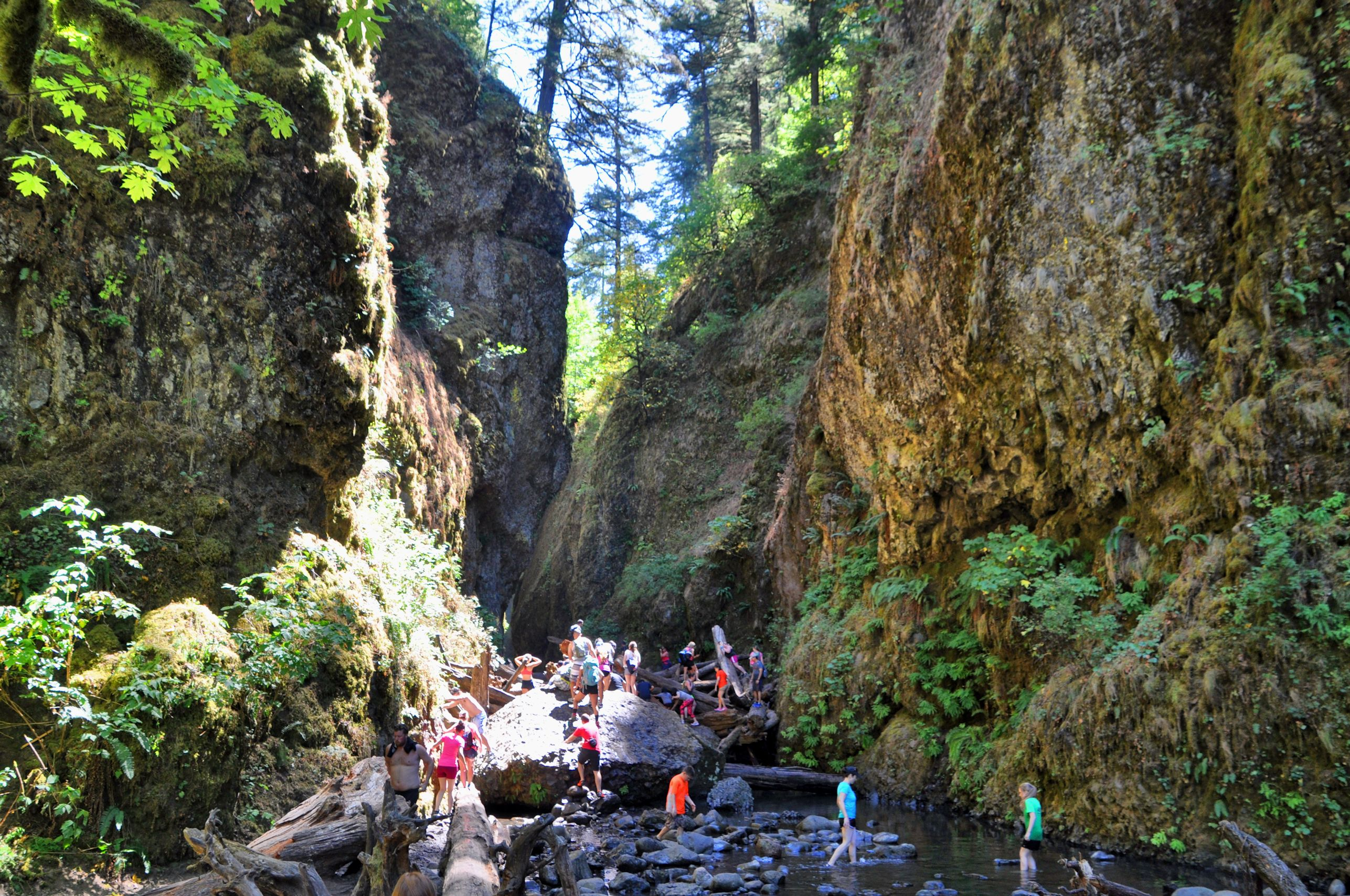 Conscientious Gorge Rock 36