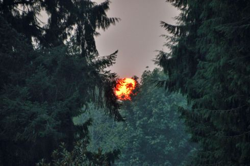 For all the hours that people were at the housewarming party, I never thought to bring out a camera, till we spotted the sun setting through smoky forest fire skies.