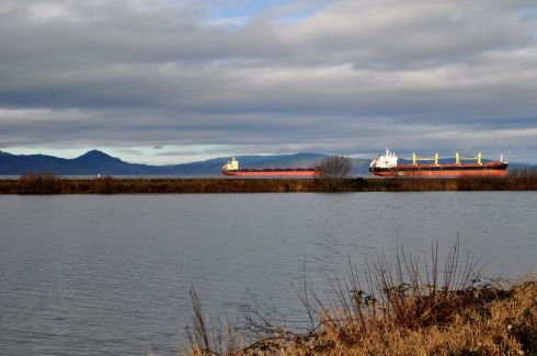 Ships appear to be moving along a track in this photo. But they are in the distance, and a man is walking his dog along the path.