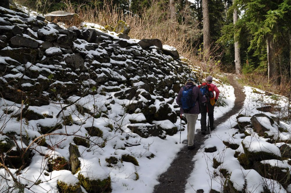 Hiked to Larch Mountain in April with a women's hiking group.
