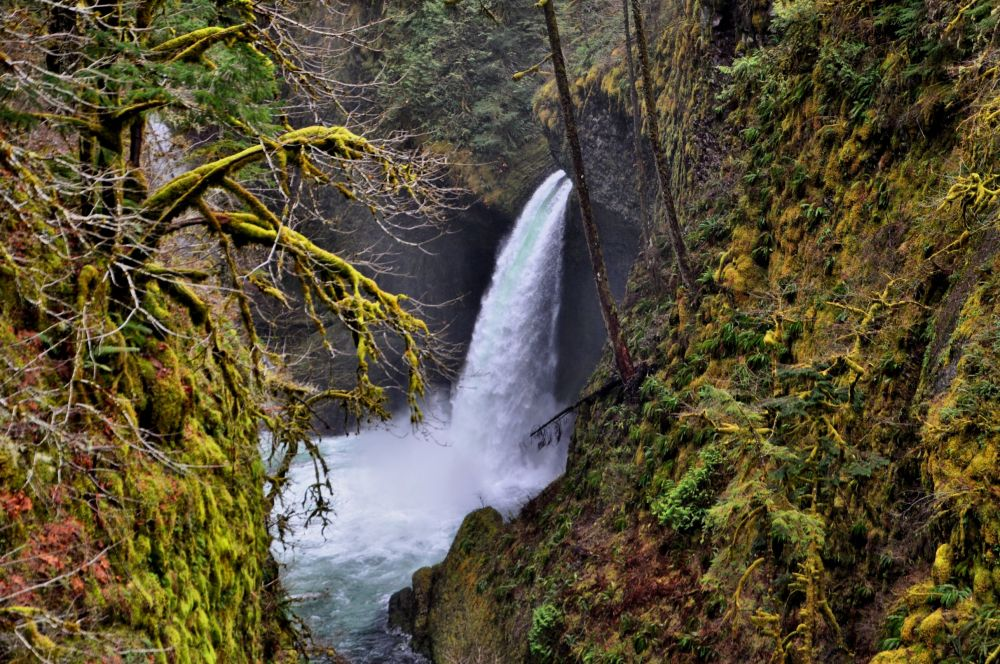 In February I got this shot of Metlako Falls on the Eagle Creek Trail