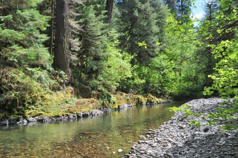South Santiam River