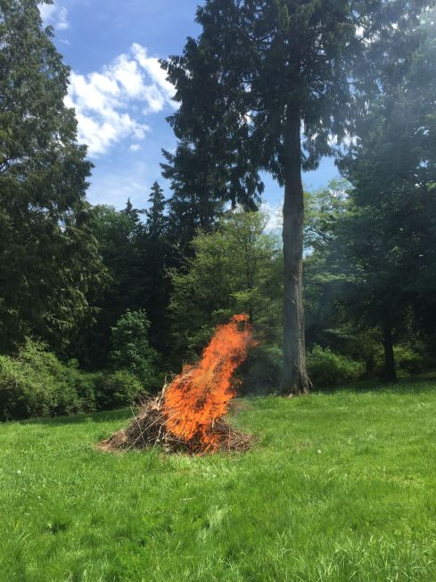 We've had a couple bonfires to burn up the branches collected over the winter.
