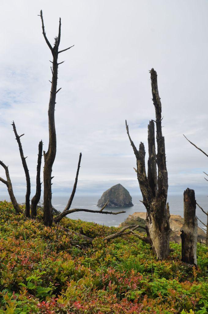Haystack Rock from Cape Kiwanda