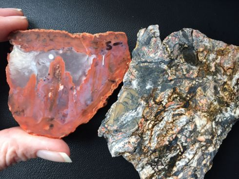 Two of the pieces I bought. The piece on the right came from McDermitt, Nevada. The piece on the left is my agate from Morocco.
