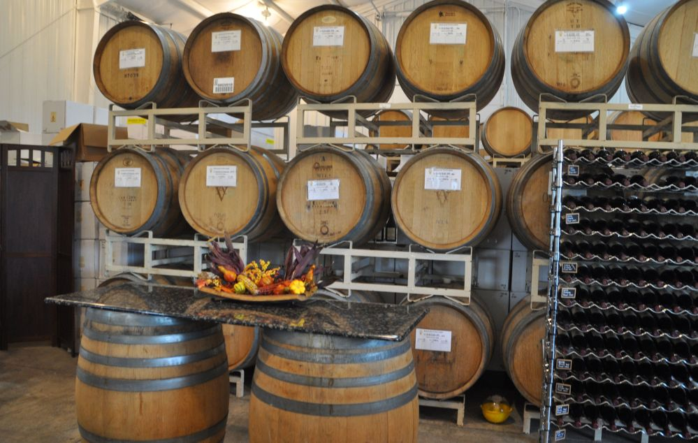 Winemaking, aging, and tasting come together in the Apolloni winery.
