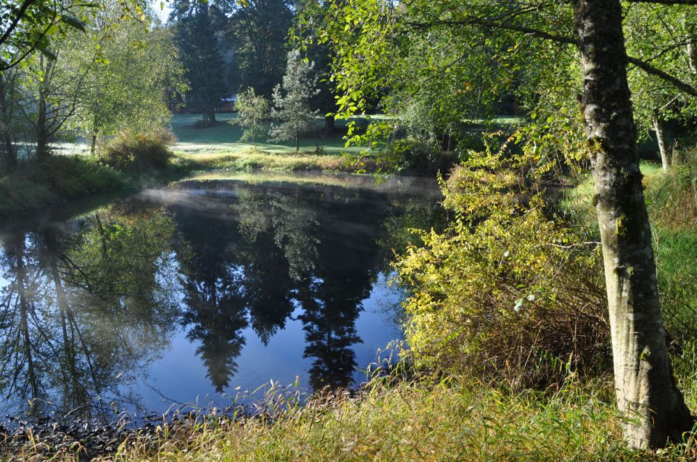 One last look at the lovely pond.