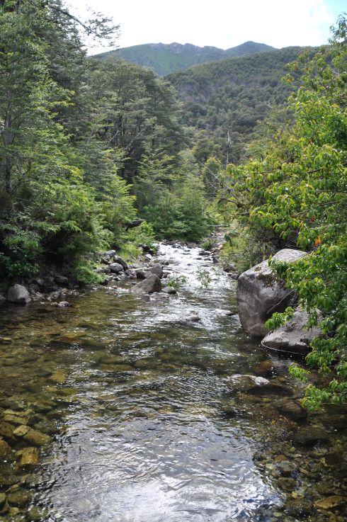 A river near Lago Tinquilco