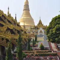 Shwedagon Pagoda & Chinatown