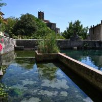Medieval Fish Hatchery and the Italian Eiffel Tower